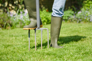 When You Should Be Aerating Your Lawn, Greener Horizon, Middleboro, MA