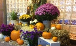 Seasonal Displays - Greener Horizon - Middleboro, MA