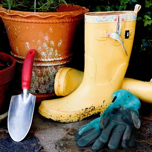Tools for Spring Landscaping